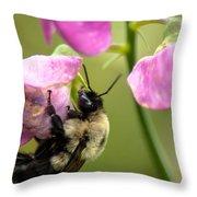 Pollination Nation V Throw Pillow