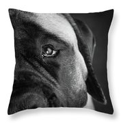Portrait Of A Mastiff Throw Pillow