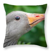 Portrait Of Greylag Goose, Iceland Throw Pillow