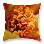 Portulaca In Orange Fading To Yellow Throw Pillow