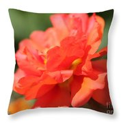 Portulaca Named Sundial Tangerine Throw Pillow