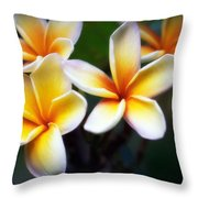 Pua Melia Throw Pillow