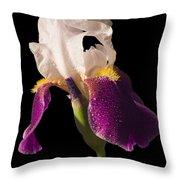 Purple And White Bearded Iris Throw Pillow