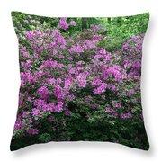 Purple Azaleas Throw Pillow