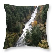 Quechee Gorge Throw Pillow