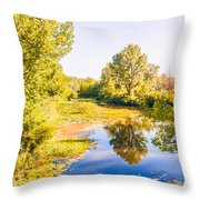 Quiet River In The Park Throw Pillow
