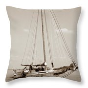 Rebecca T Ruark Throw Pillow