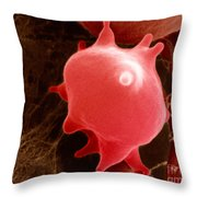 Red Blood Cell In Hypertonic Solution Throw Pillow