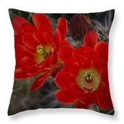 Red Hot Hedgehog  Throw Pillow