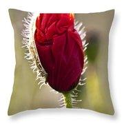 Red Poppy Bud Throw Pillow