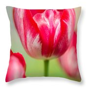 Red Tulips On The Green Background Throw Pillow