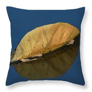 Reflection Of Fall Throw Pillow