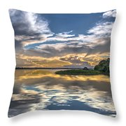 Silver And Blue Throw Pillow