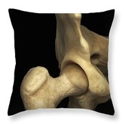 Right Hip Joint Male Throw Pillow