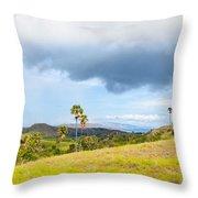 Rinca Panorama Throw Pillow by MotHaiBaPhoto Prints