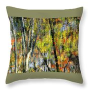 Rippley Reflection Throw Pillow