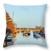 River Frome At Wareham Throw Pillow