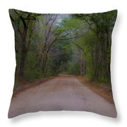 Headed To The Angel Oak Throw Pillow