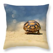 Road Warrior Throw Pillow by Laura Fasulo