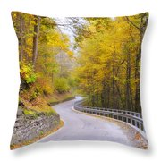 Road With Curves Throw Pillow