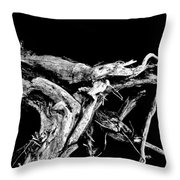 Roots 1 Throw Pillow