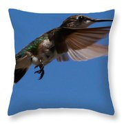 Ruby-throated Hummingbird Throw Pillow