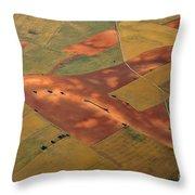 Rural Beauty Throw Pillow