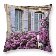 Saint Remy Windows Throw Pillow