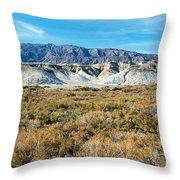 Salt Creek Death Valley National Park Throw Pillow