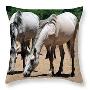 Salt River Wild Horses Throw Pillow