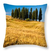 San Quirico D'orcia Throw Pillow