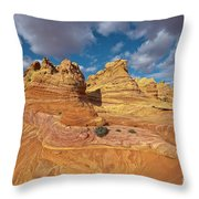 Sandstone Vermillion Cliffs N Throw Pillow