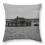 Sandys Furry Throw Pillow