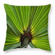 Saw Palmetto  Throw Pillow