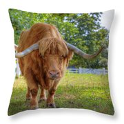 Scottish Highlander Ox Throw Pillow