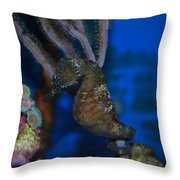 Seahorse And Coral Throw Pillow