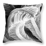 Sem Of Guppy Fish Gill Throw Pillow