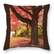 Shading Autumn Throw Pillow