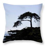 Silhouette Of Monterey Cypress Tree Throw Pillow