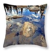 Sky Reflections Throw Pillow