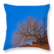 Slickrock Formation Throw Pillow