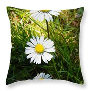 Small Smaller And Smallest Throw Pillow
