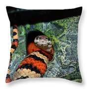 Snake Throw Pillow