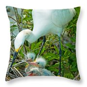 Snowy Egret Tending Young Throw Pillow
