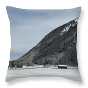 Snowy Meadow Throw Pillow