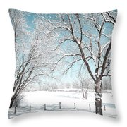 Snowy Trees On The Erie Canal Throw Pillow