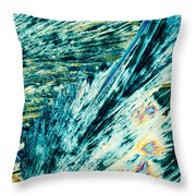 Sodium Thiosulphate Crystals In Polarized Light Throw Pillow