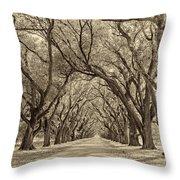 Southern Journey Sepia Throw Pillow