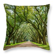 Southern Journey  Throw Pillow