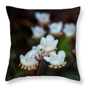 Spotted Wintergreen 2 Throw Pillow